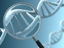 Should You Be Screened? What to Ask Each Other Before Seeking a Gene Test