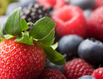 Top Foods for a Long Life