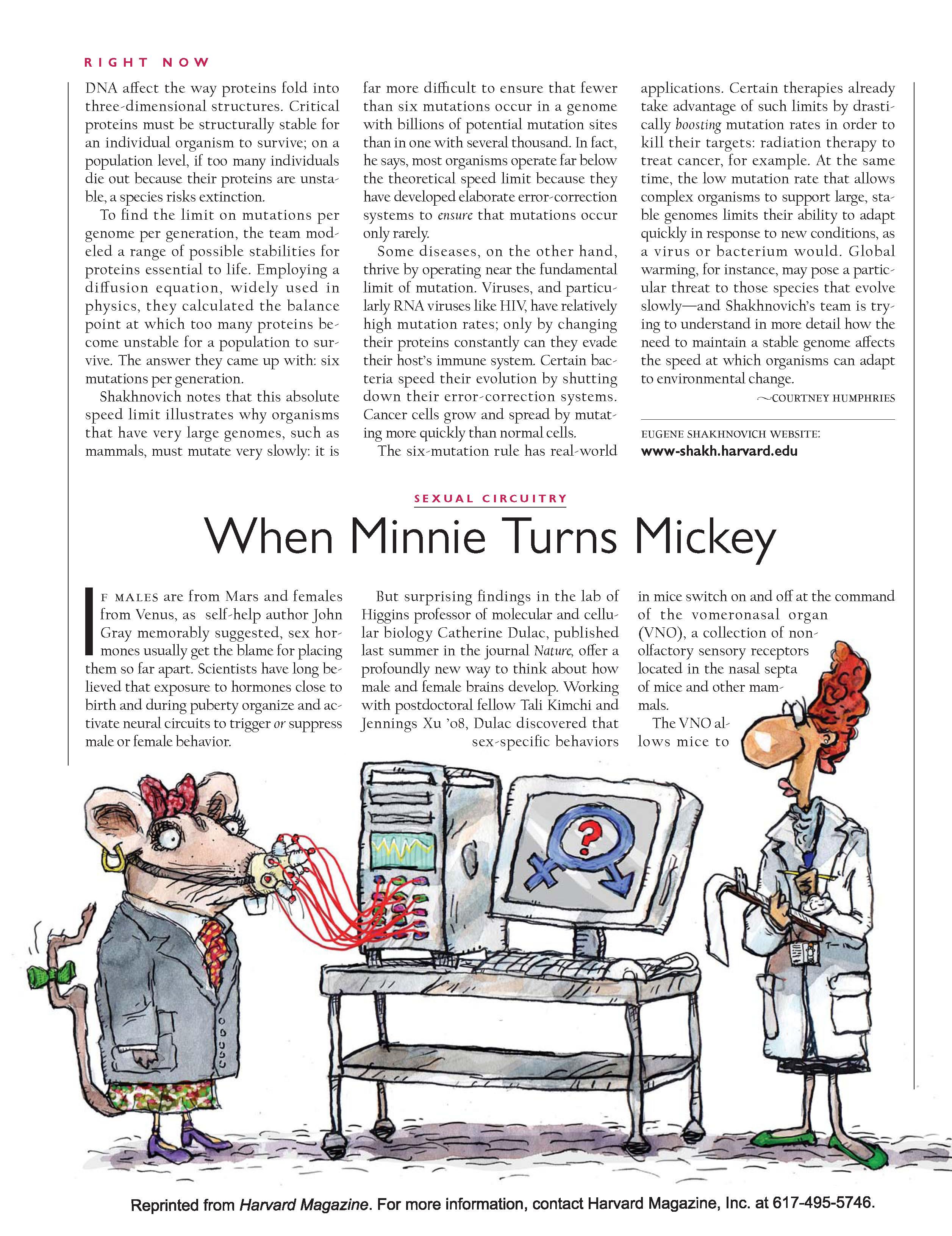 When Minnie Turns Mickey